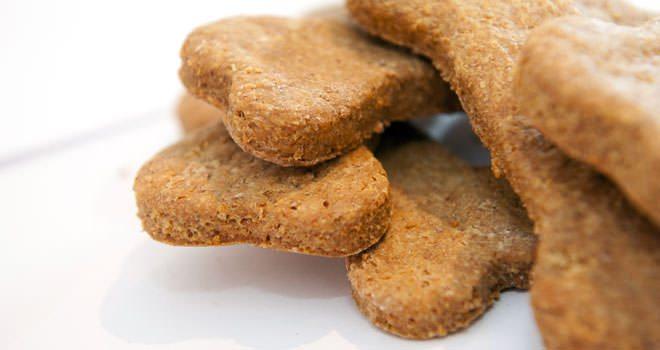 biscotti x cani