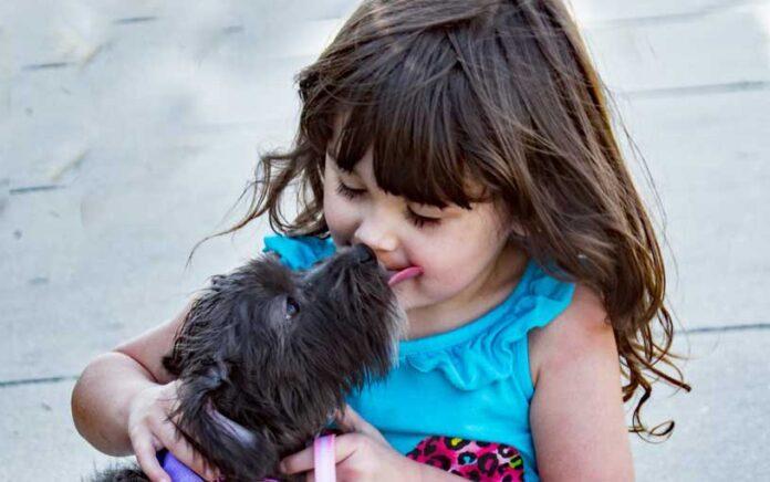 cani e bambini piccoli