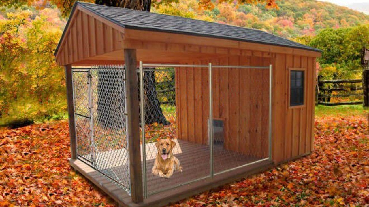 Idee Cucce Per Cani come costruire un recinto per cani   recinto per cani fai da te