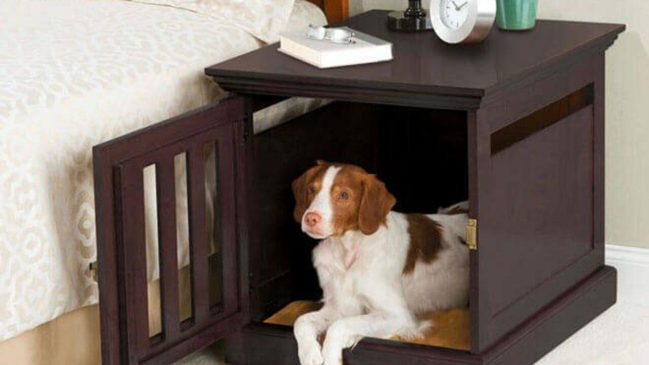 Cuccia Gatto Fai Da Te come costruire una cuccia per cani da interno | cuccia per