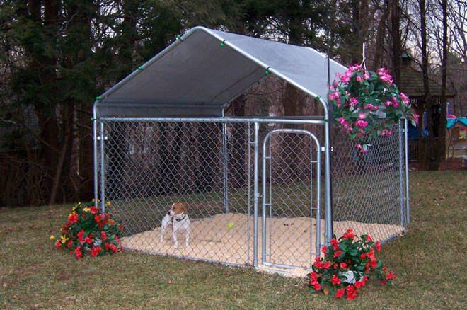 come fare un recinto per cani