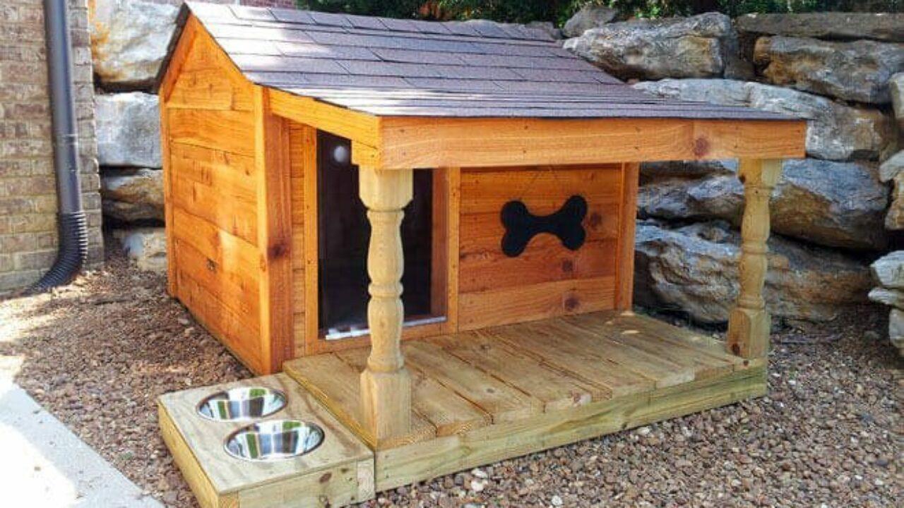 Come Costruire Una Cuccia Coibentata cucce per cani da esterno | come costruire una cuccia per