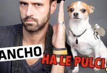 Nic and Pancho