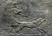 Peritas Alessandro Magno