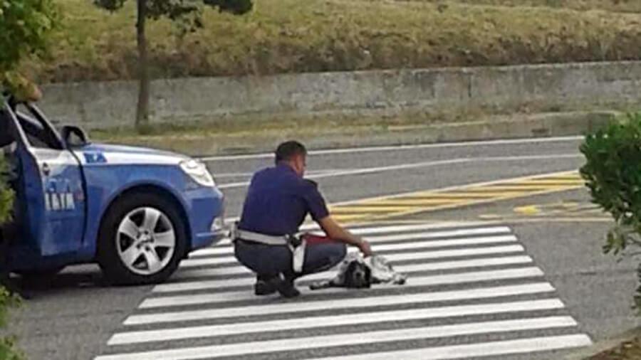 poliziotto salva cane abbandonato