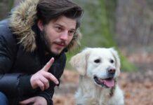 rinforzo addestramento cani