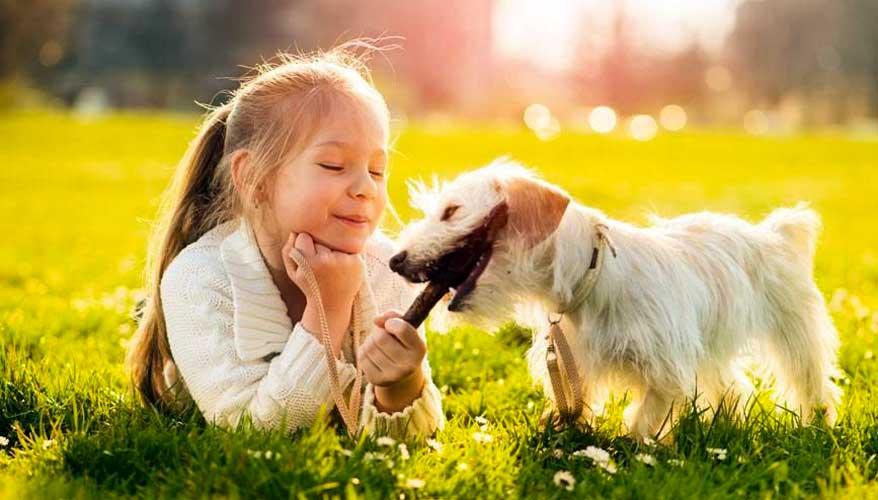 razze di cani per bambini