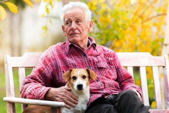 adozione animali e famiglie in difficoltà