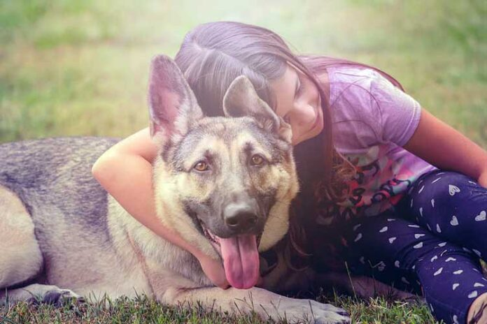 razze cani adatte ai bambini