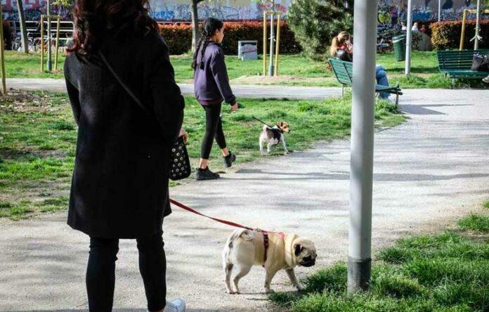 milano cani liberi nei giardini dei bambini