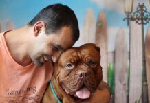 storia farmacista cane